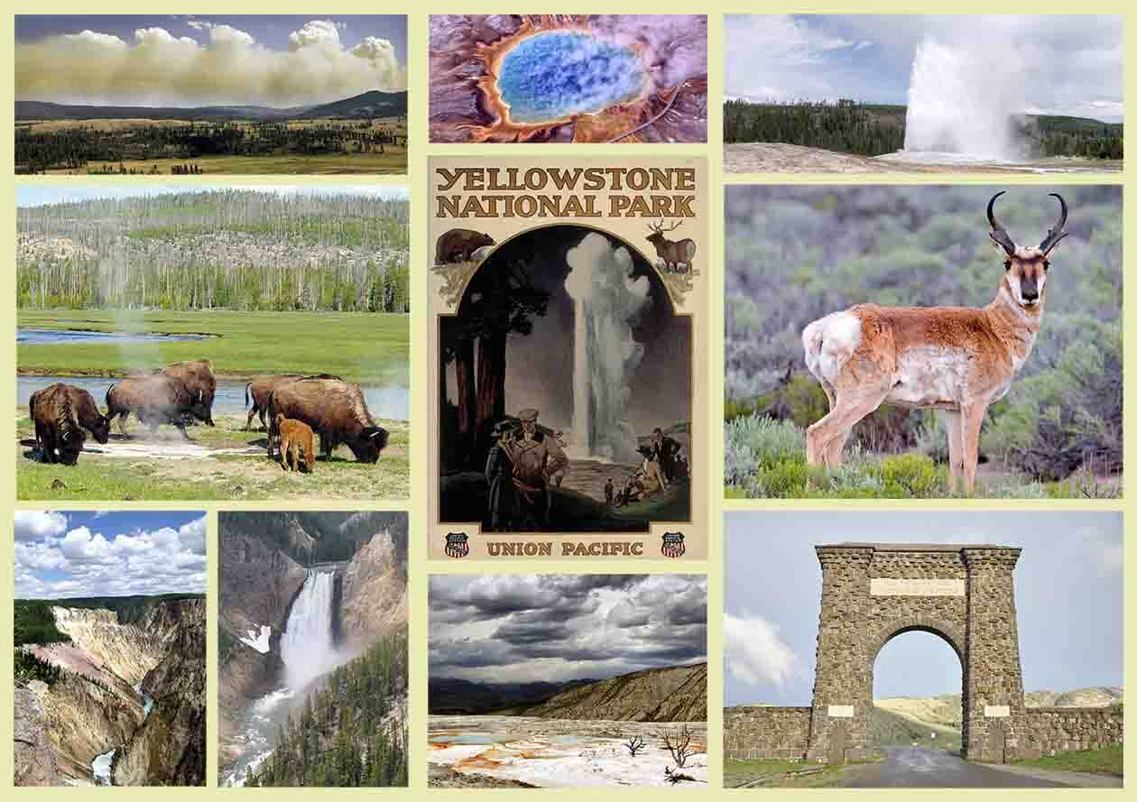 Yellowstone Souvenirs To Enjoy