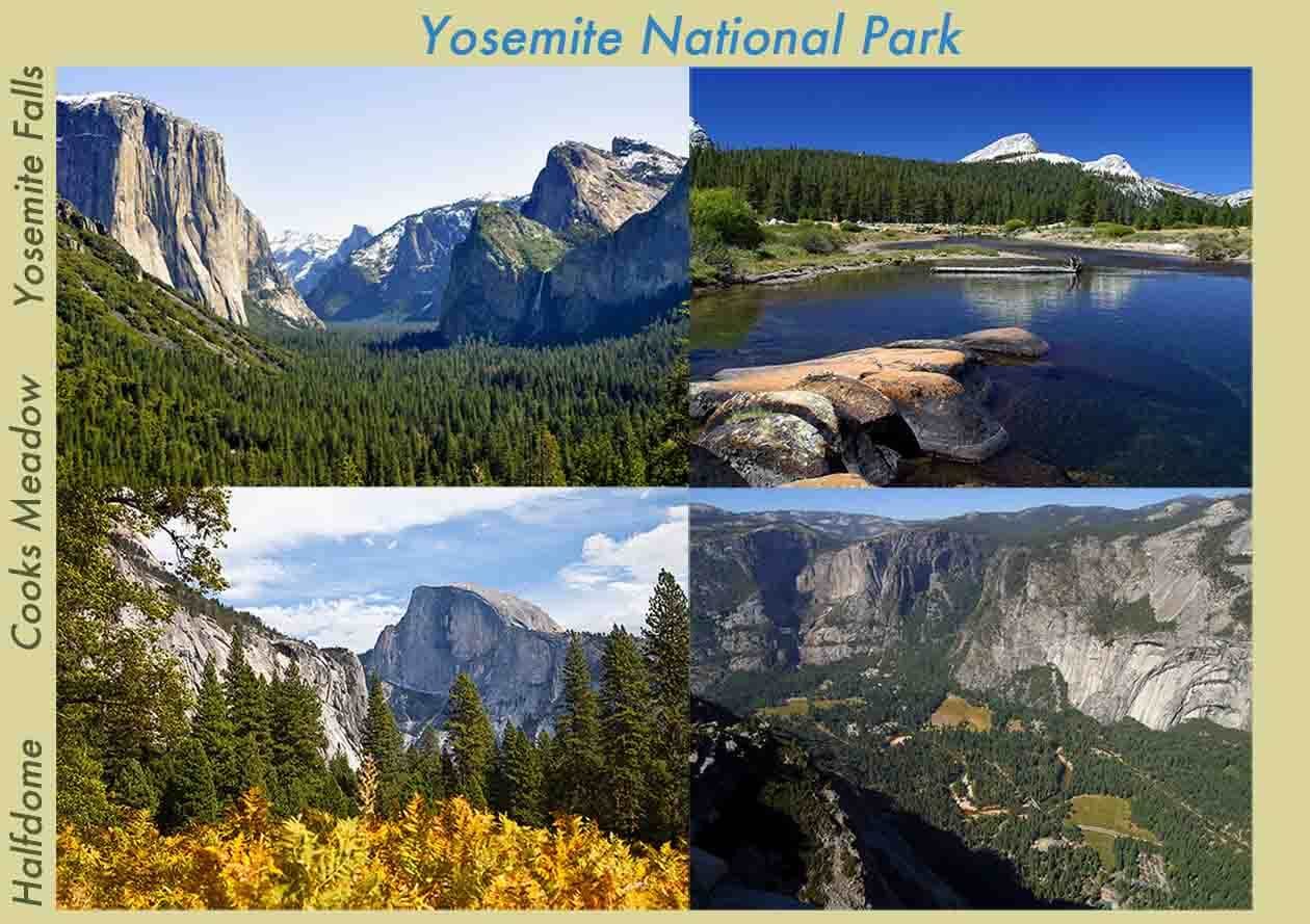 Yosemite Souvenirs To Enjoy