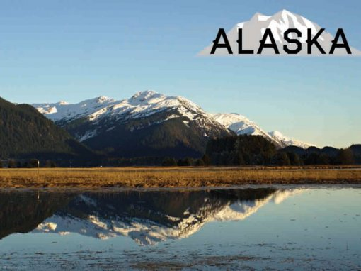 Alaska Souvenirs To Enjoy