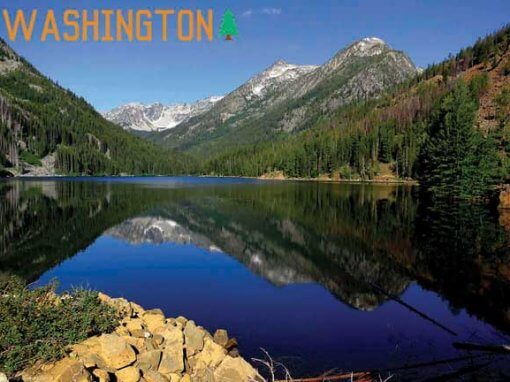 Washington Souvenirs To Enjoy