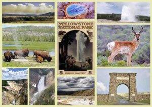 yellowstone souvenirs