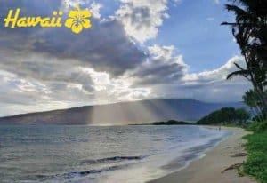 Hawaii Souvenir Mats