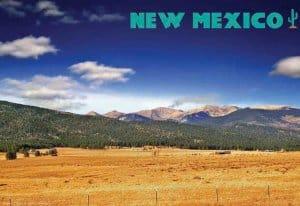 New Mexico Souvenir Mats