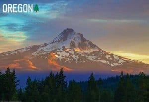 Oregon Souvenir Mats