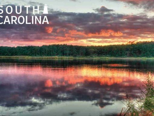 South Carolina Souvenirs To Enjoy