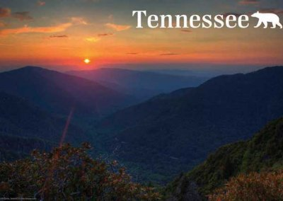 Tennessee Souvenirs To Enjoy
